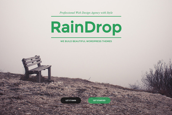 raindrop-wordpress-theme-3-f